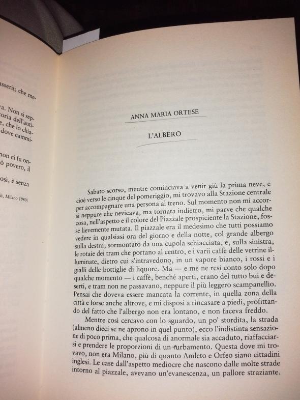 Anna Maria Ortese, collezione Simona Rinaldi