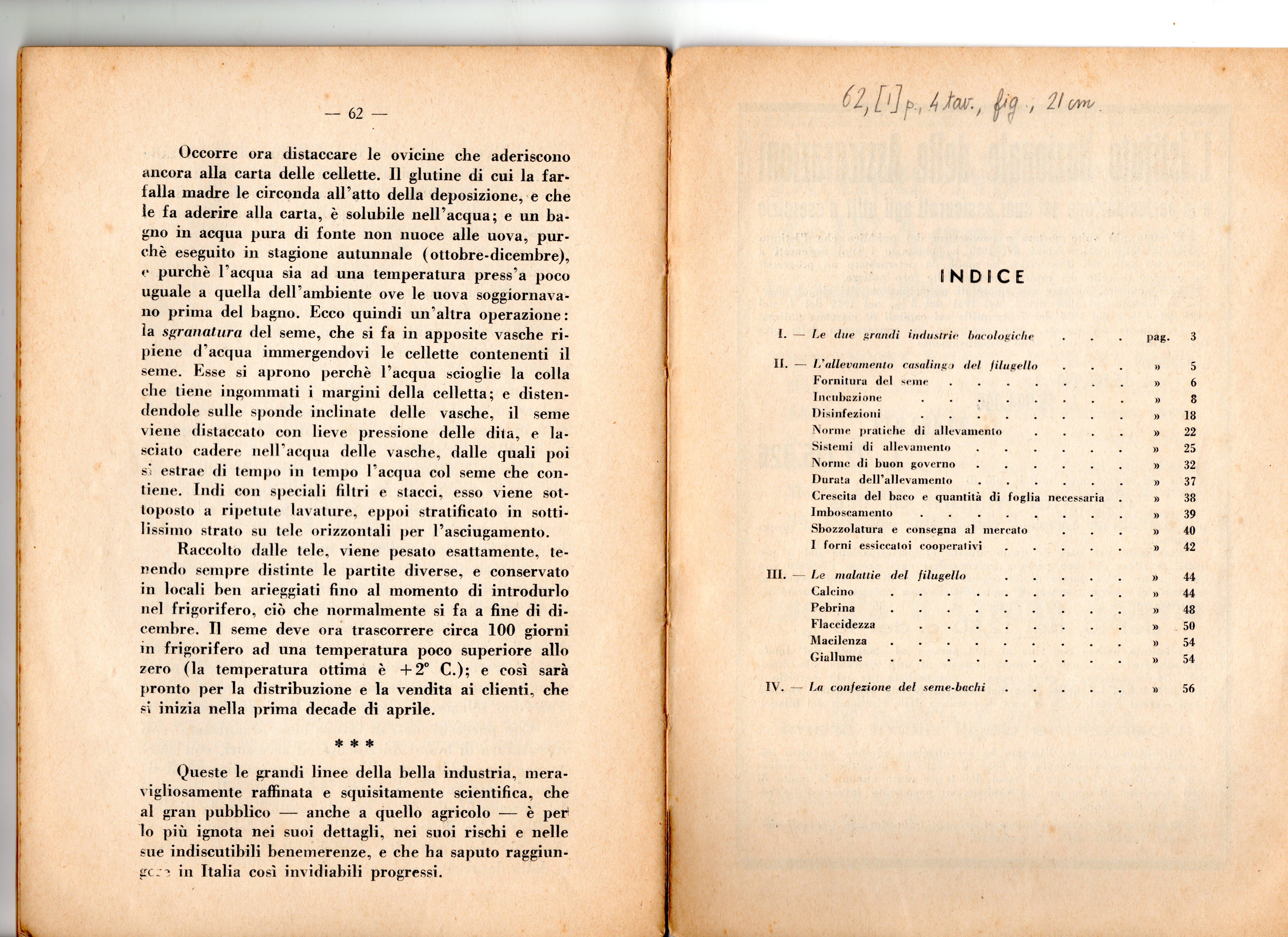 Indice Il Baco da Seta 1936